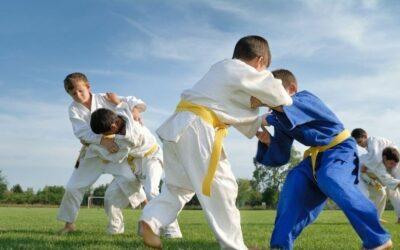 Projet de relance judo été du CD 44